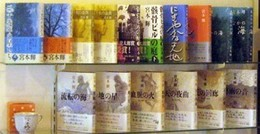 Teru-book1.jpg