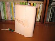 book-caver 006.JPG