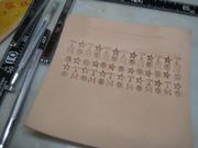 clft-teru 002.JPG
