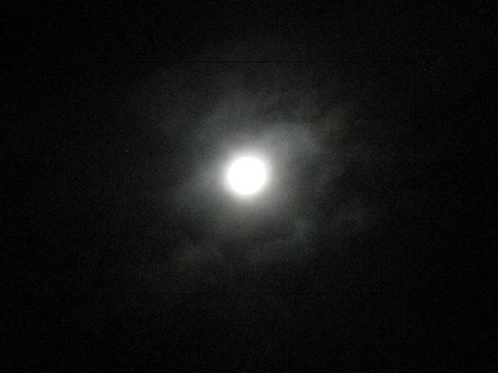 2011-04-28Sachi 001.jpg