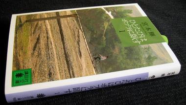 Teru-book.jpg