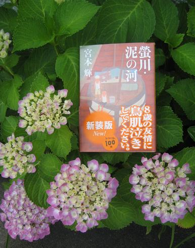 teru-book 002.JPG